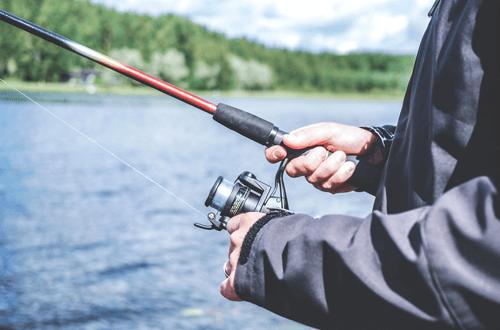 biebrza wędkowanie, wędkowanie, ryby, połów, biebrza, biebrza agroturystyka