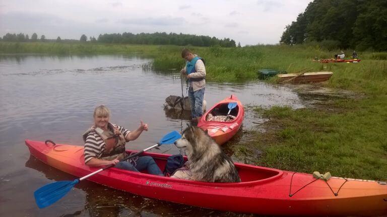 Pies podczas spływu kajakowego